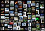 Bilder eines Jahres - 2006