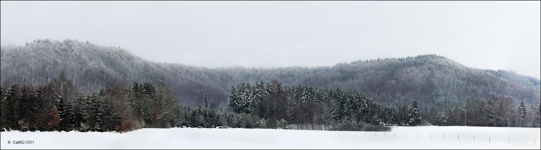 Bilder meiner Landschaft #07