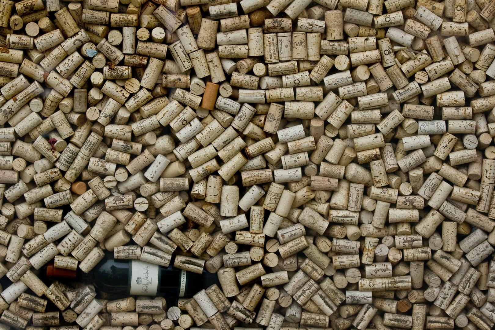 Bilderrätsel: Wo ist die Weinflasche? ;-)