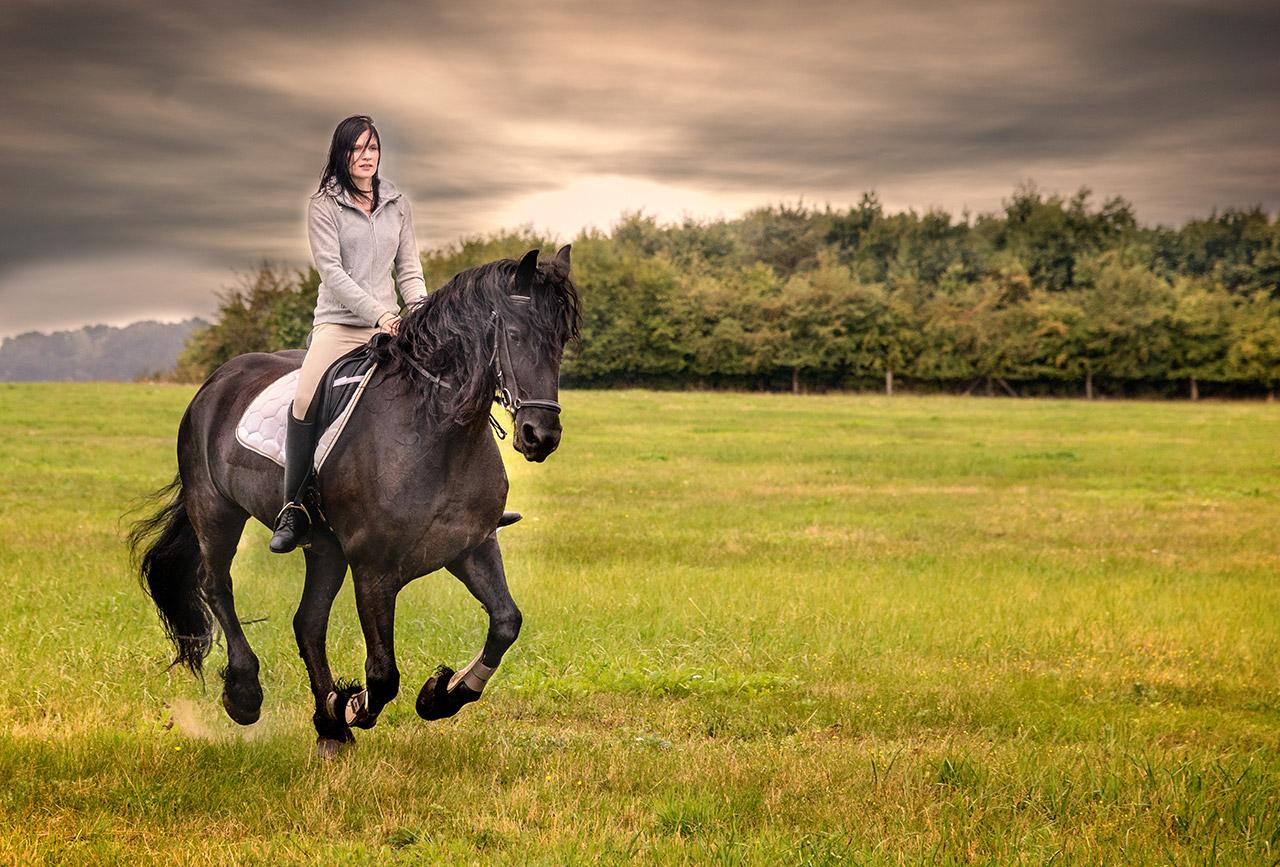 Bildserie: Mensch und Pferd - 9