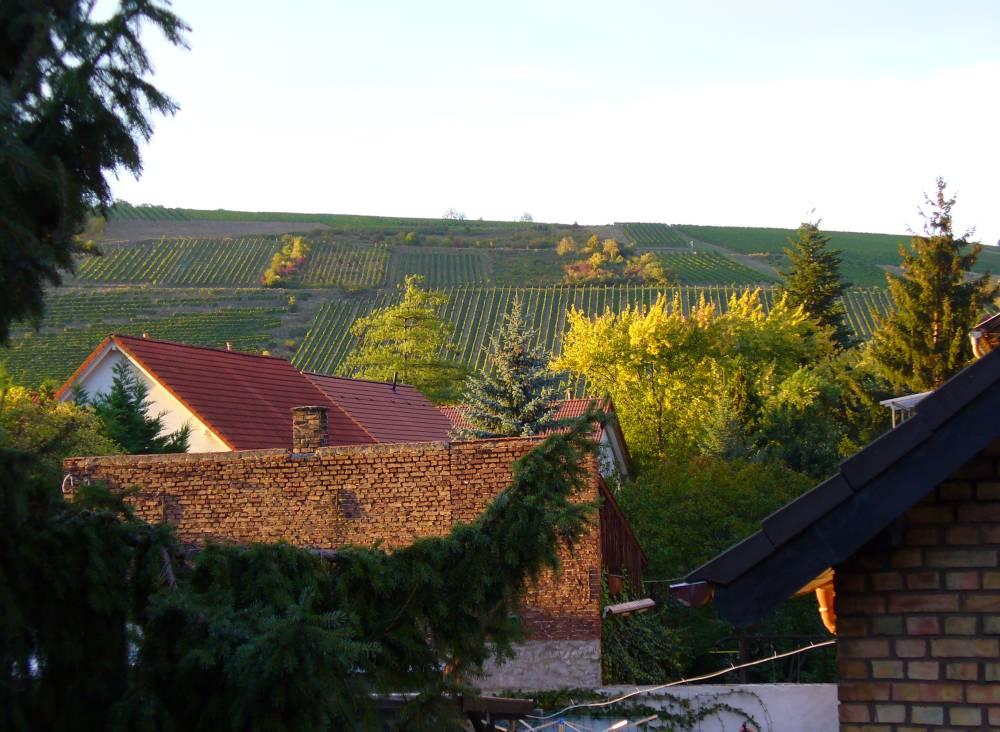Binger Rochusberg bei schönem Wetter