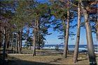 Binz Strandszene (2)