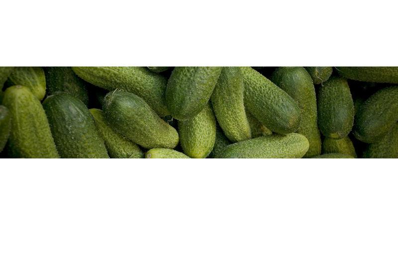 Biostrip - Esst mehr Obst & Gemüse! 2