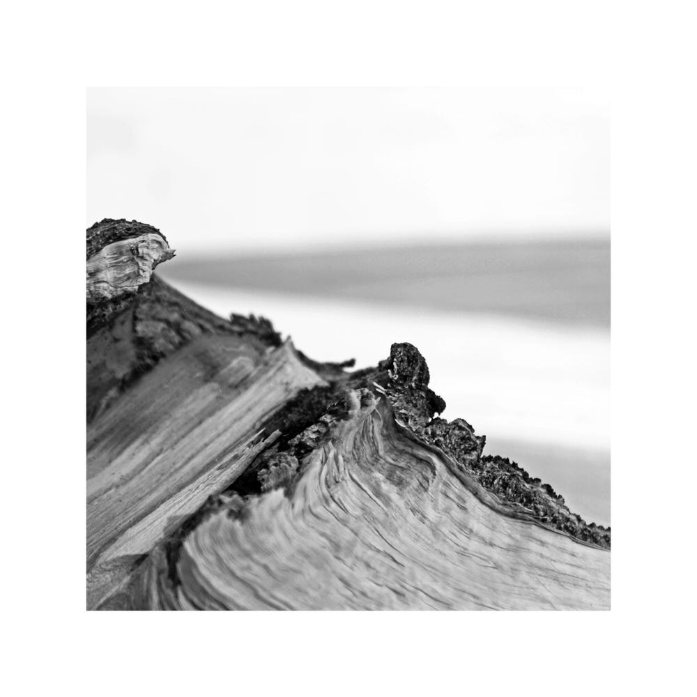 birchwood-mountain