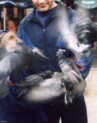 Birds ala Hichkok...?