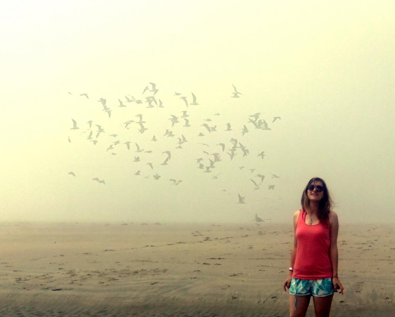Birds in the haze