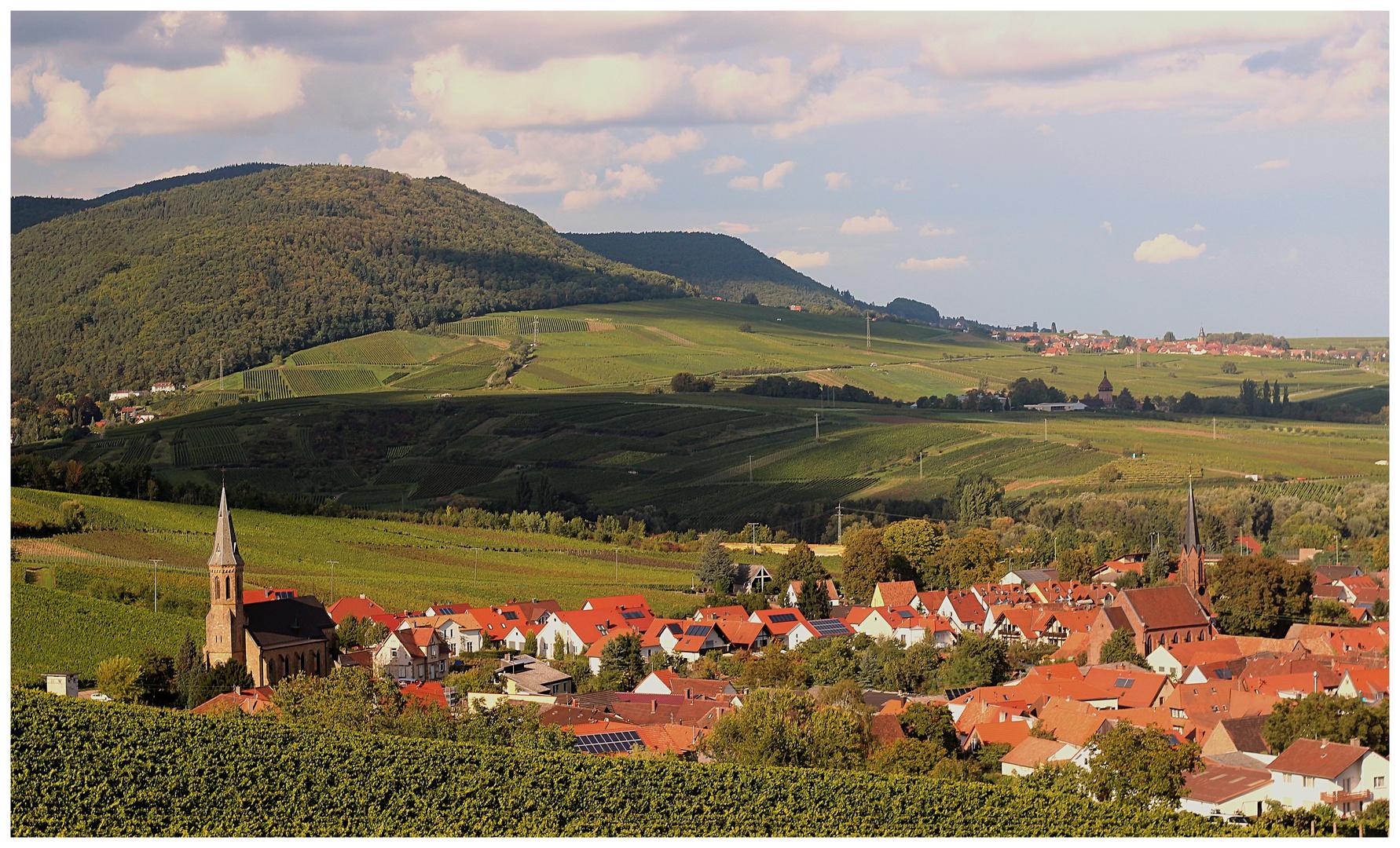 Birkweiler im Frühhherbst