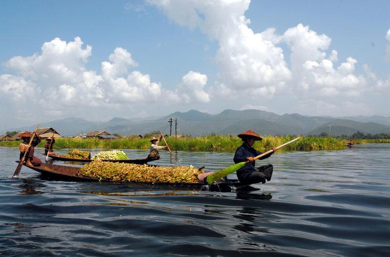 Birmania-2006