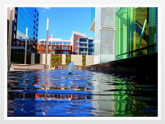 Birmingham Waterart