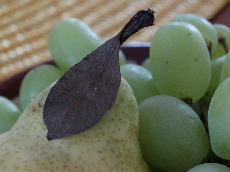 Birne und Trauben
