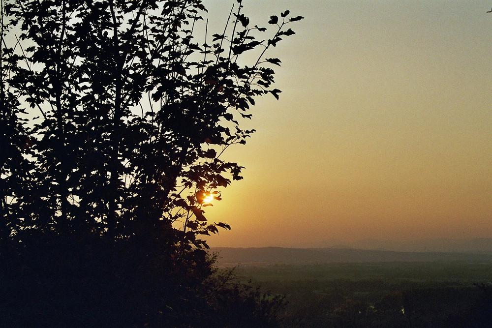 ... bis morgen liebe Sonne
