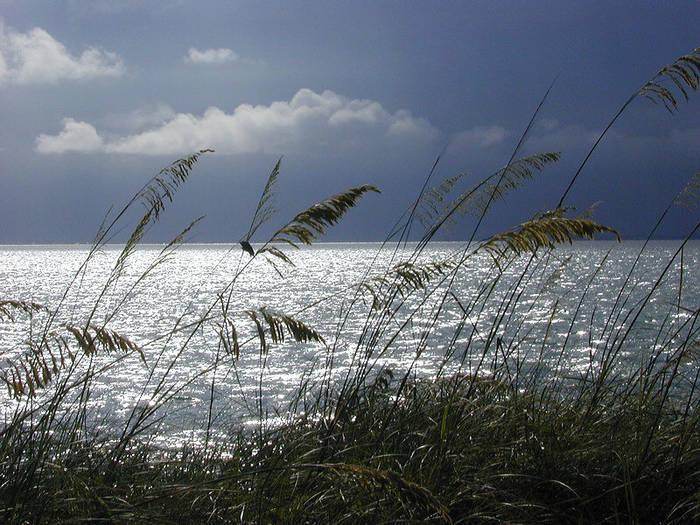 Biscayne Bay Florida