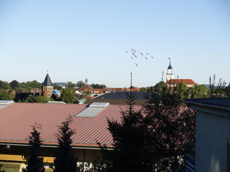 Bischofswerda 2009