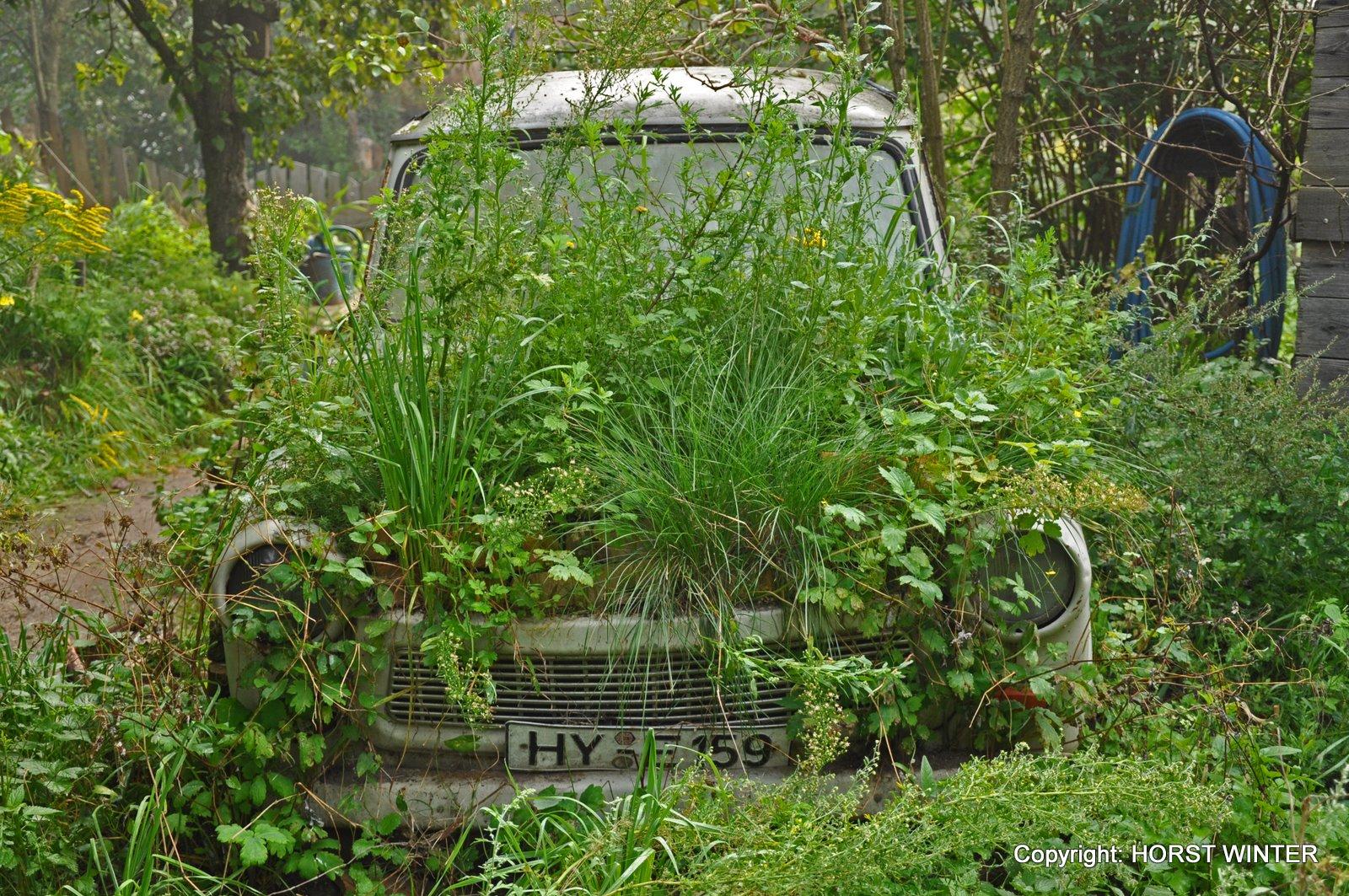Bitte einsteigen zur Fahrt ins Grüne