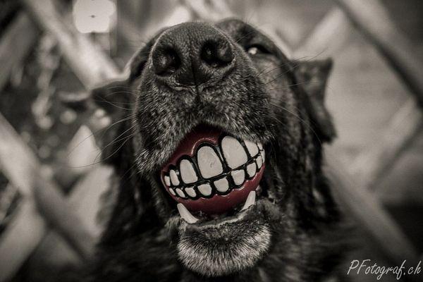 bitte lächeln...
