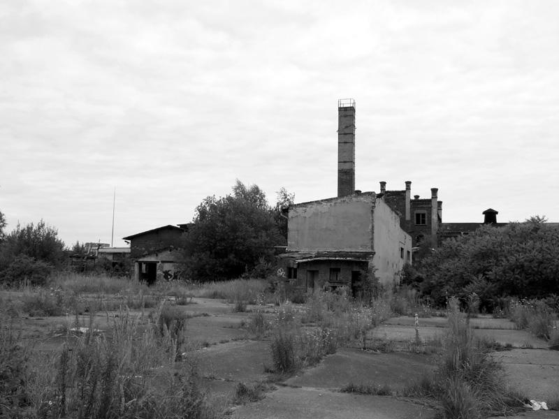 Bitterfeld, 2. Besuch, Juli 2008, 8