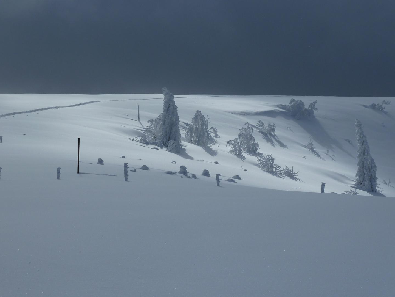 Bizarre Winterlandschaft