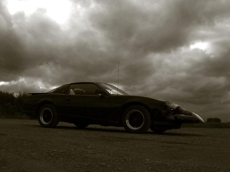 black firebird II