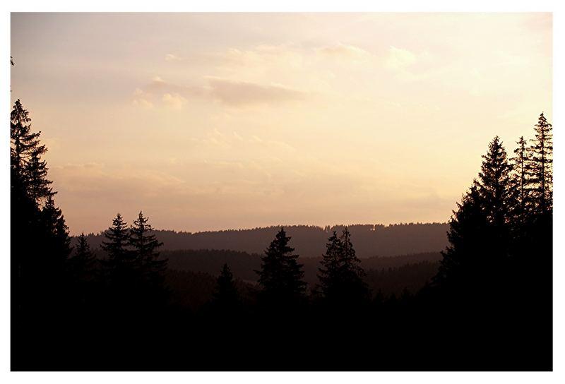 Black Forest...