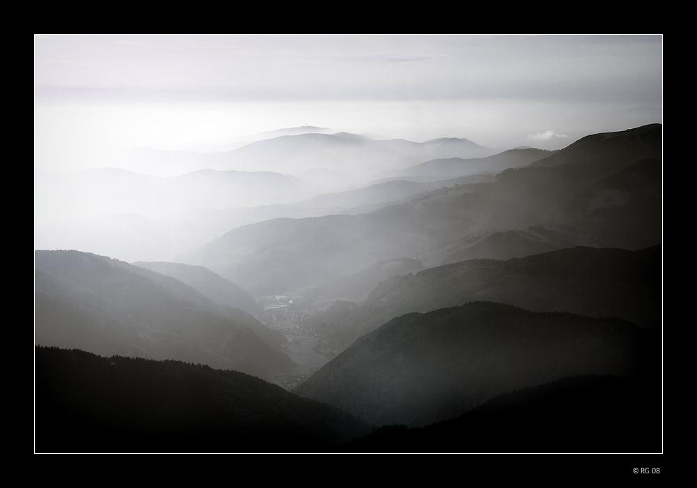 """Black Forest"""