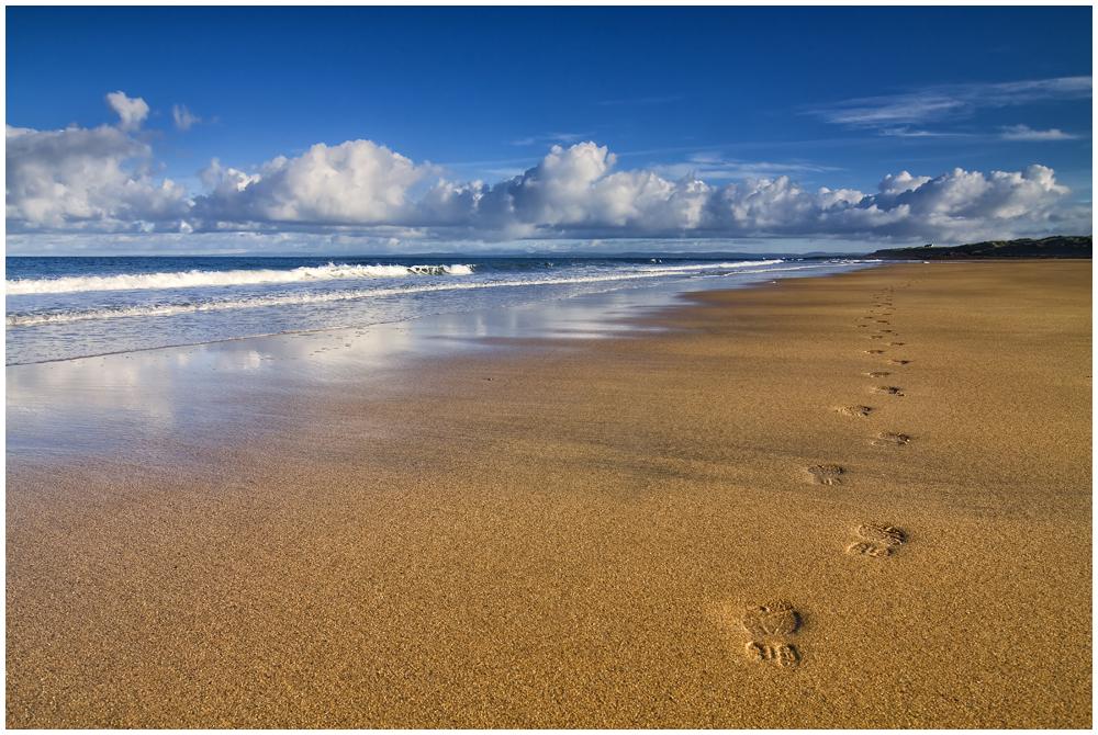 Black Head Beach