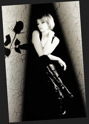 Black Rose & White