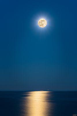 Black Sea by Moonlight