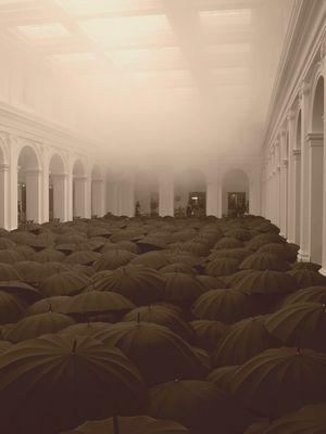 Black Umbrella Display von Matej Andraz Vogrincic