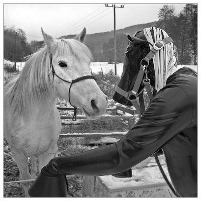 Blackrubberhorse VI - First Contact