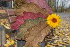 Blätter auf der Bank