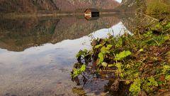 Blätter mit Bootshütte