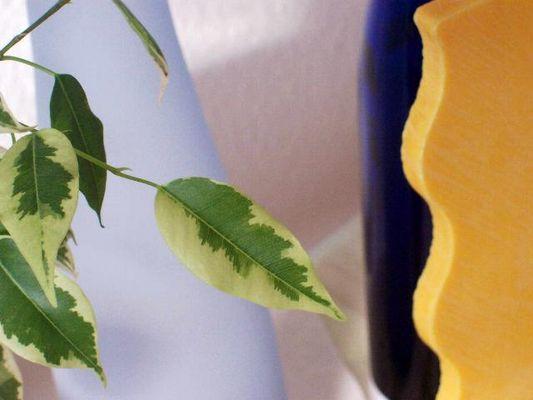 Blätter und Vasen