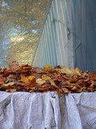 Blätteraltar