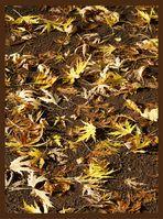 Blättermalerei mit Sonne