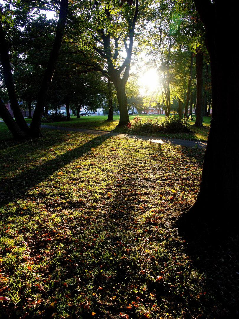 Blätterpark