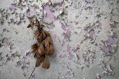 Blätterzweig...