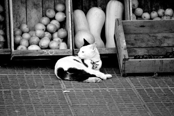 Blanco y negro.