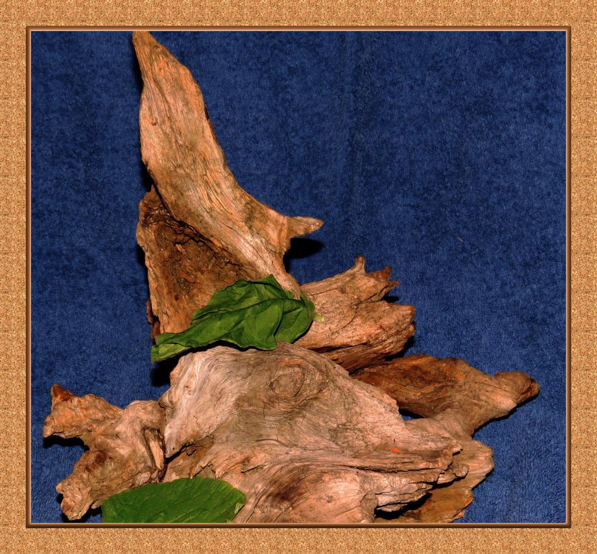 Blatt auf Holz