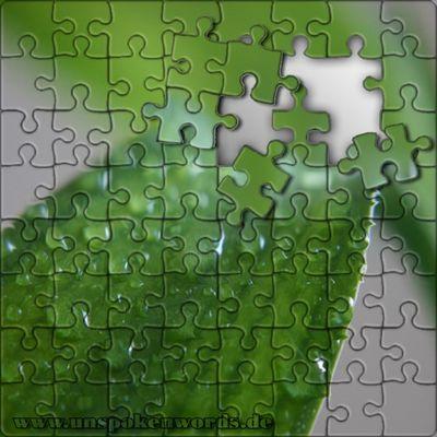 Blatt - Puzzle