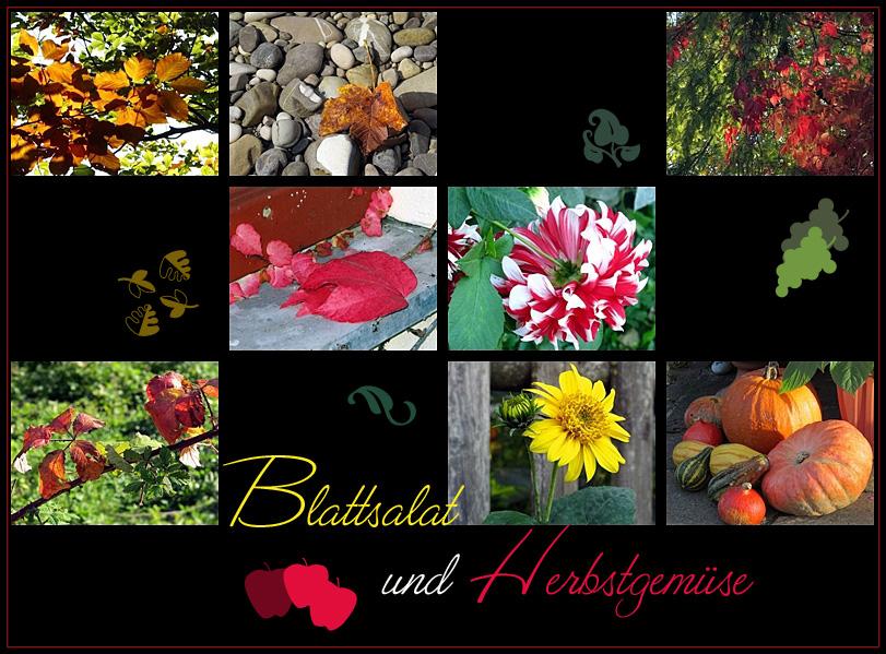 Blattsalat und Herbstgemüse