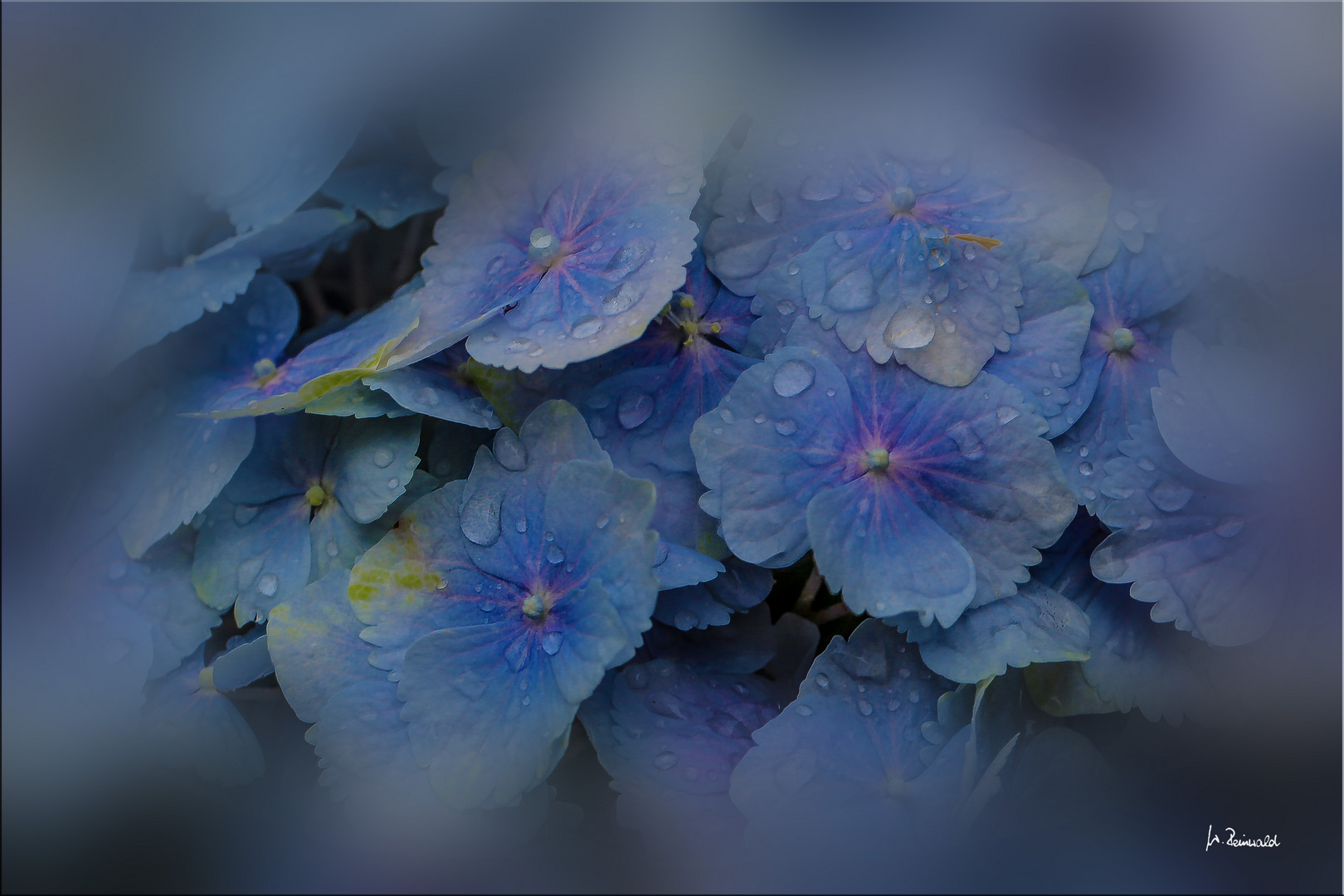 ''' Blau ***