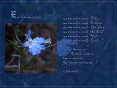 Blau bedeutet Hoffnung...