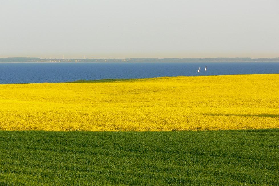 *** Blau - Gelb - Grün *** Ostsee / Grömitz, Frühjahr 2008 ***