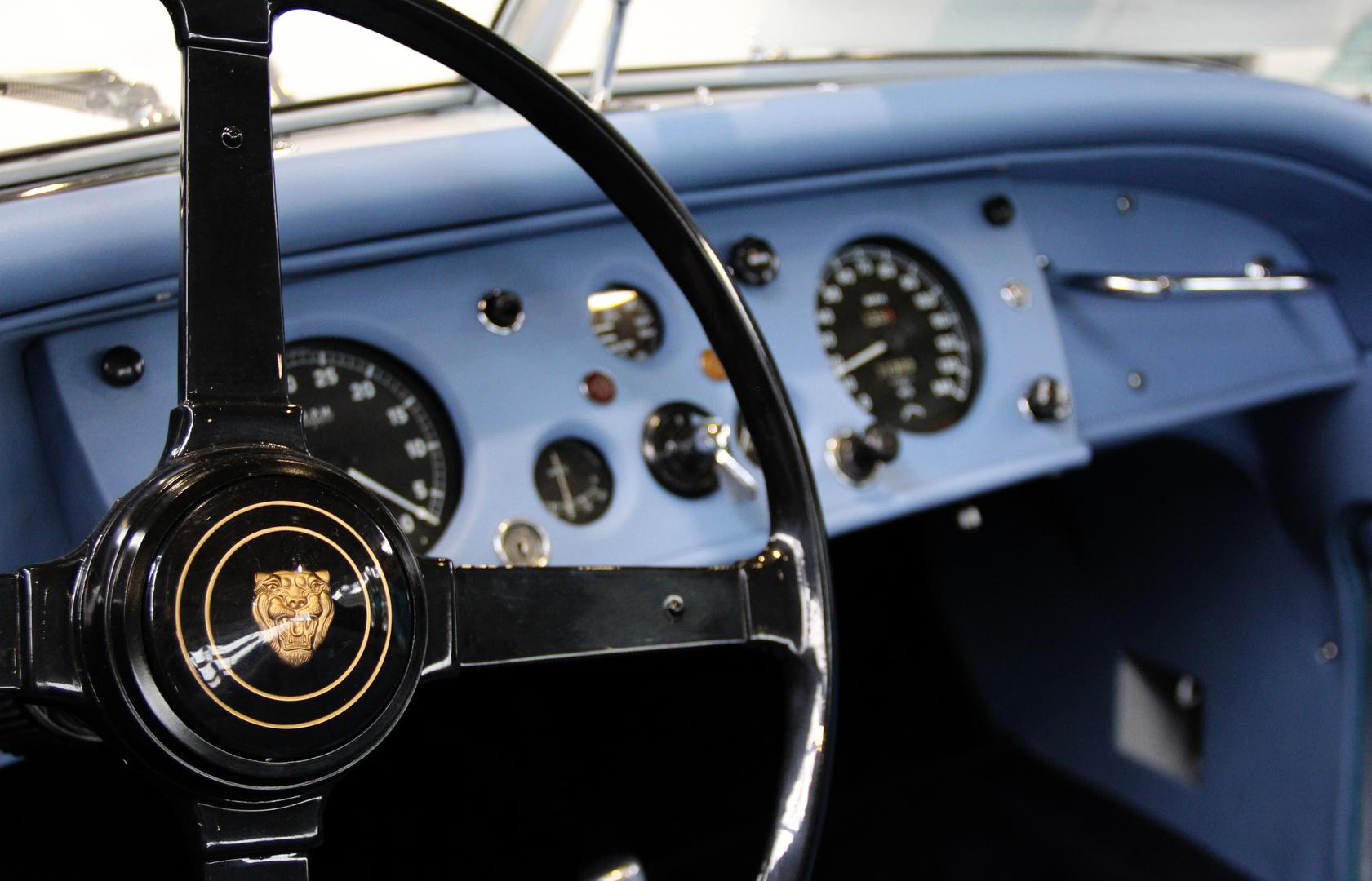 Blau hinterm Lenkrad