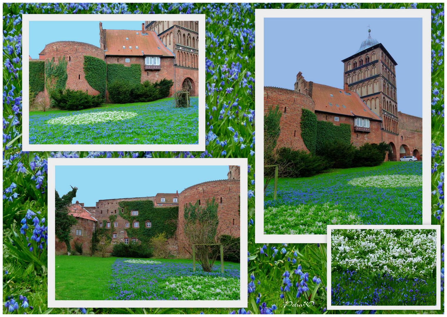 Blau-weiß-grün am Burgtor in Lübeck