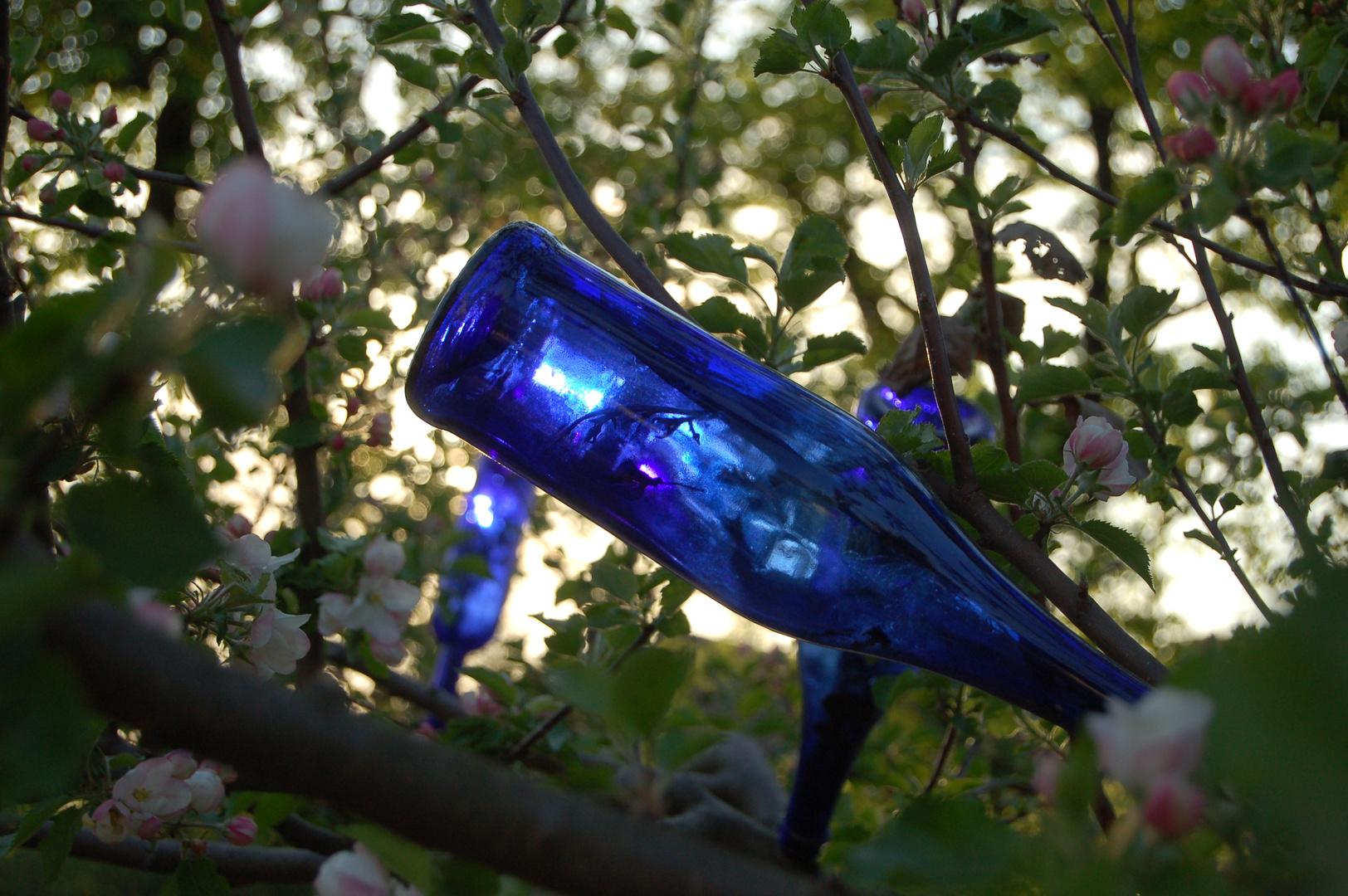 Blaue Flasche