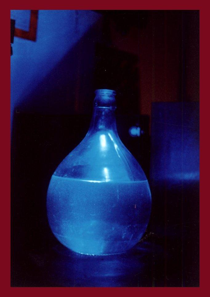 Blaue Flasche I