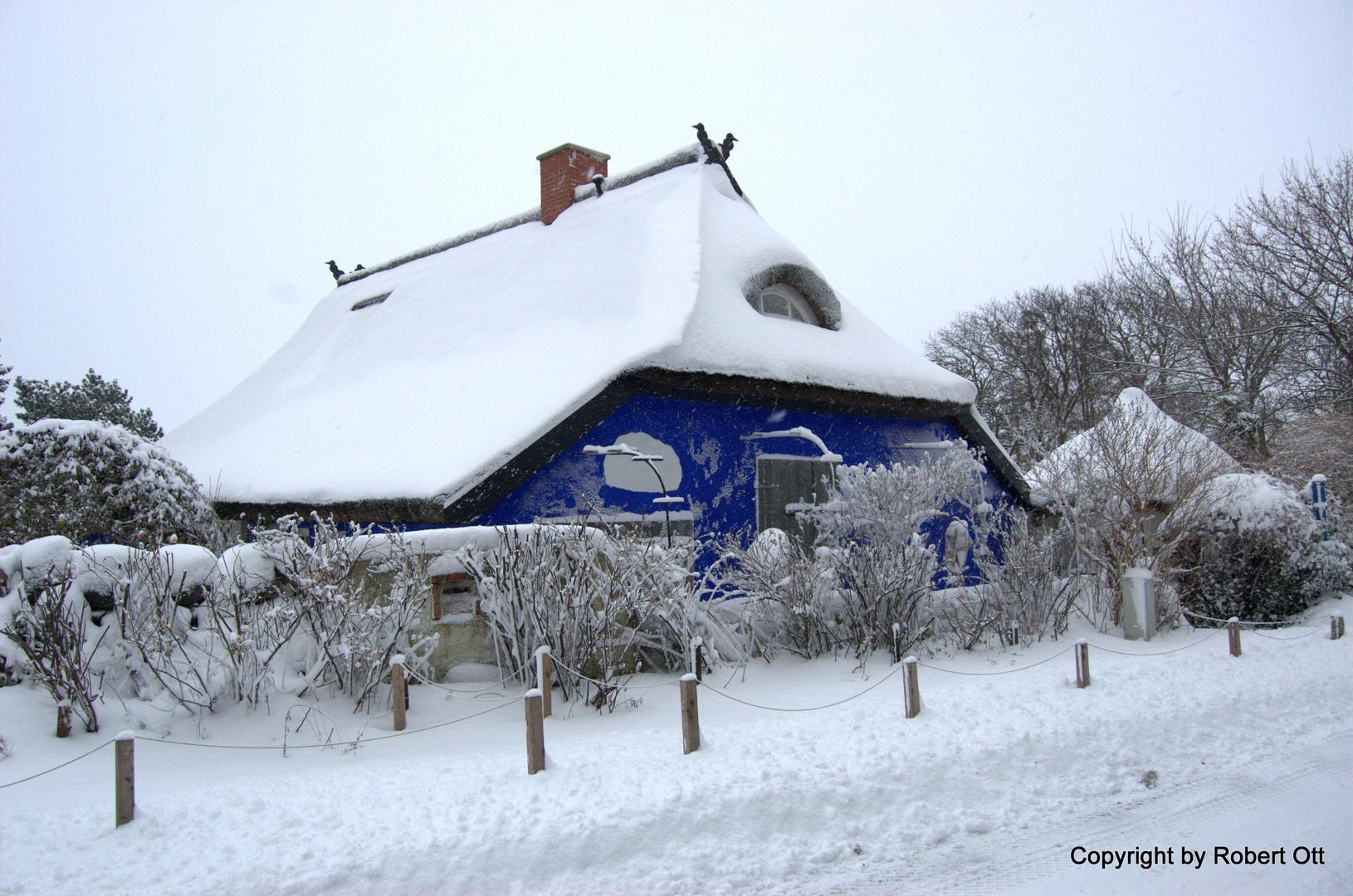 Blaue Scheune in Vitte Hiddensee nach dem Schneesturm 2 Dezember 2010