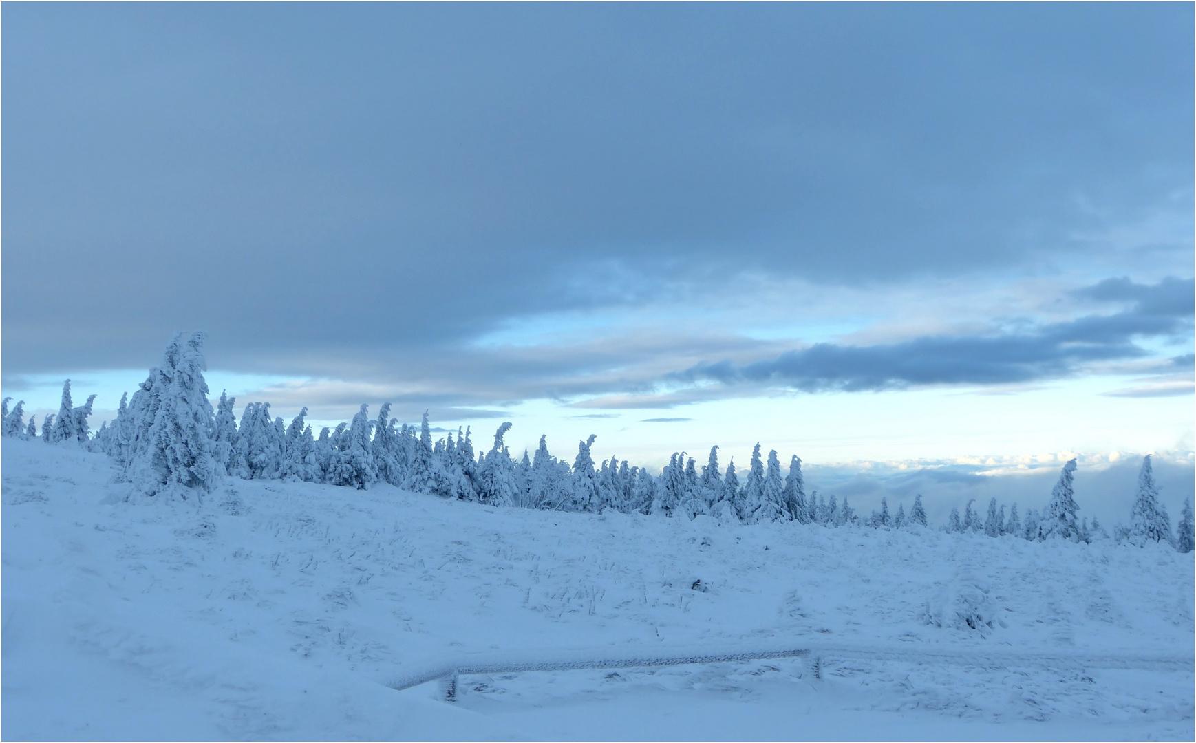 Blaue Stunde am Brocken