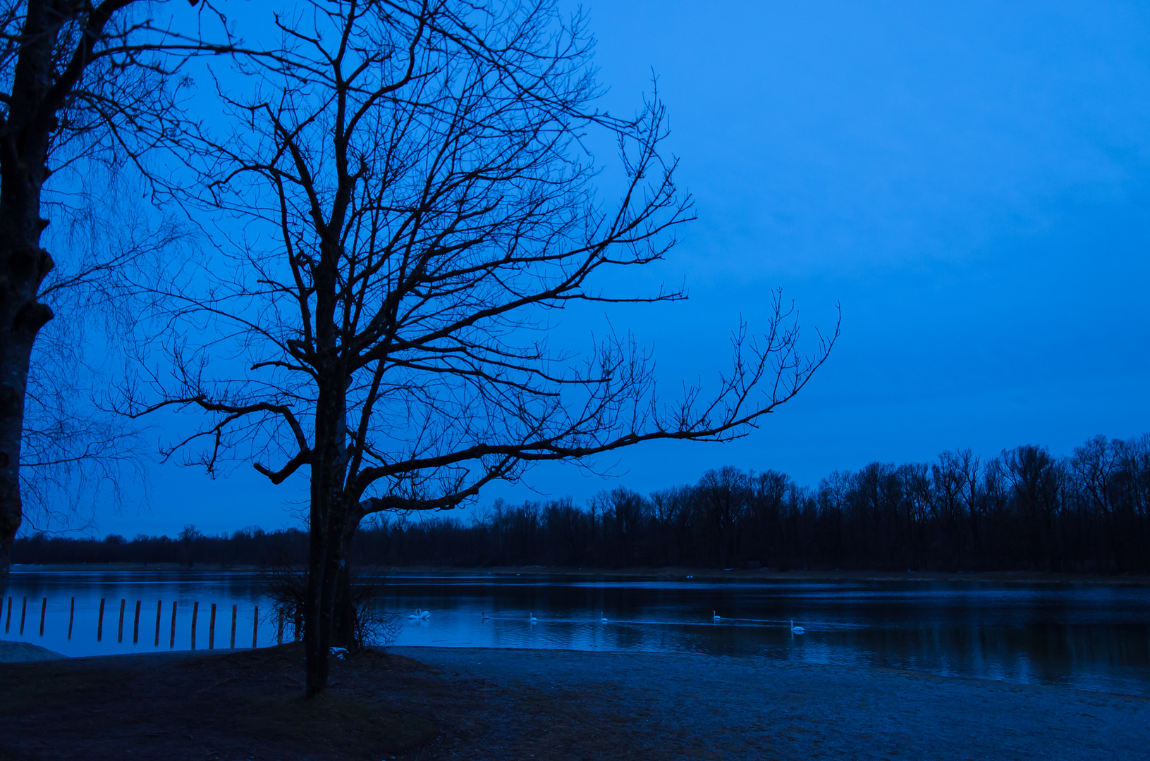 Blaue Stunde am Kuhsee